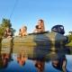 Надувная лодка Parsun 300 моторная - 5